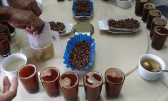 파푸아뉴기니 커피에 대한 희망을 갖고 있는 사람들_[6-2편]